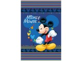Blanket-Limneos-Mickey-Mouse